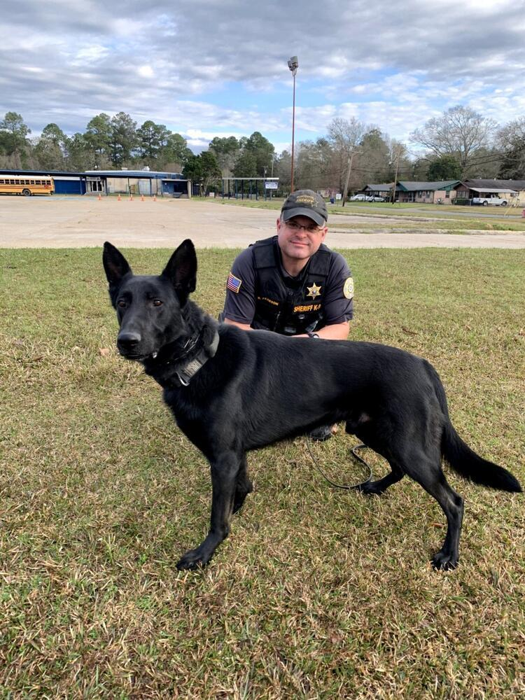 Beauregard Parish Sheriff Deputy kneeling beside K-9